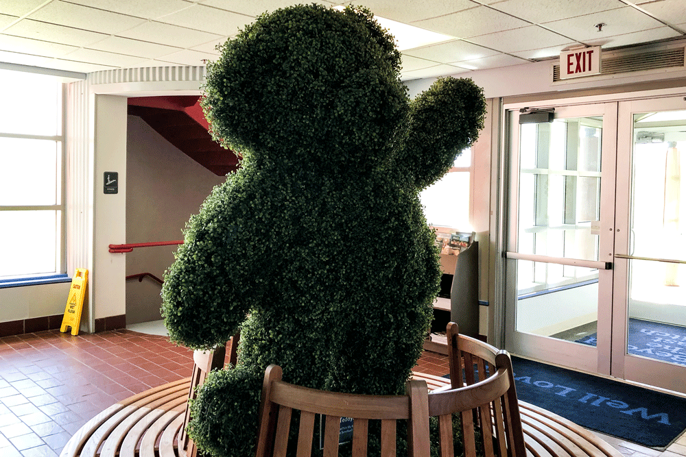Topiary Bear at Vermont Teddy Bear Factory